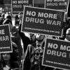 Politics Of Cannabis