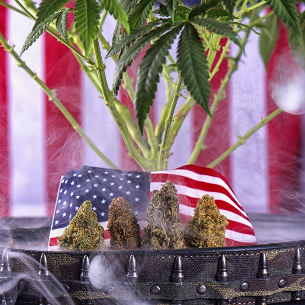 Federal Cannabis Law