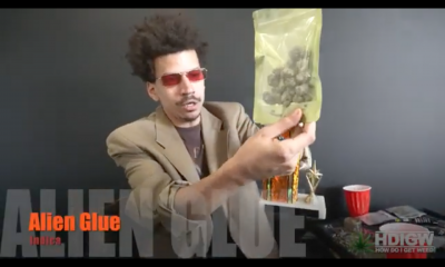 Alien Glue Vid