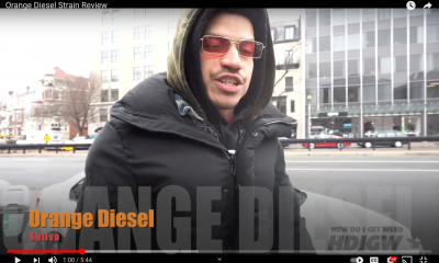 Orange Diesel Vid Pic