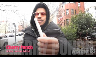 Cherry Punch Vid Pic