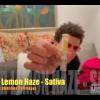 Super Lemon Haze HoneyStick Distillate Carts